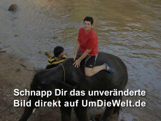 """Thailand Reisebericht""""Elefanten Camp Maetaman"""""""