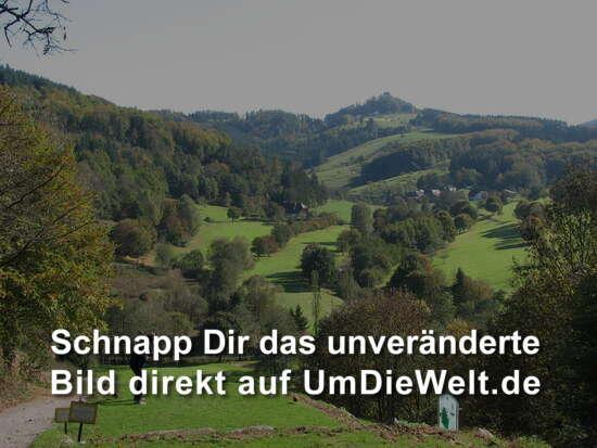 deutschland reisebericht golfen im steilen schwarzwaldtal. Black Bedroom Furniture Sets. Home Design Ideas