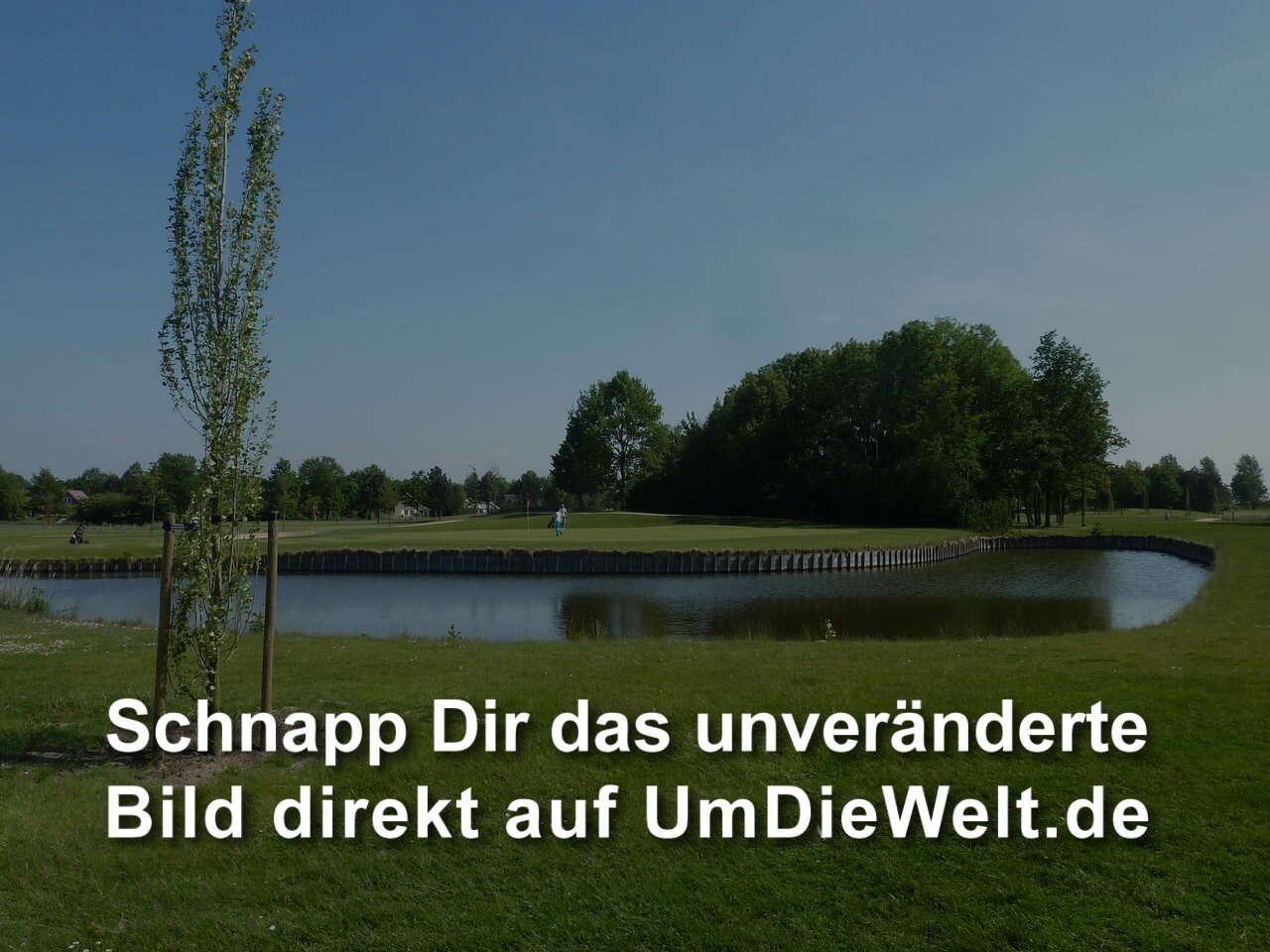 Niederlande reisebericht golf grevelingenhout