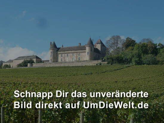Chateau von Rully - privates Weingut