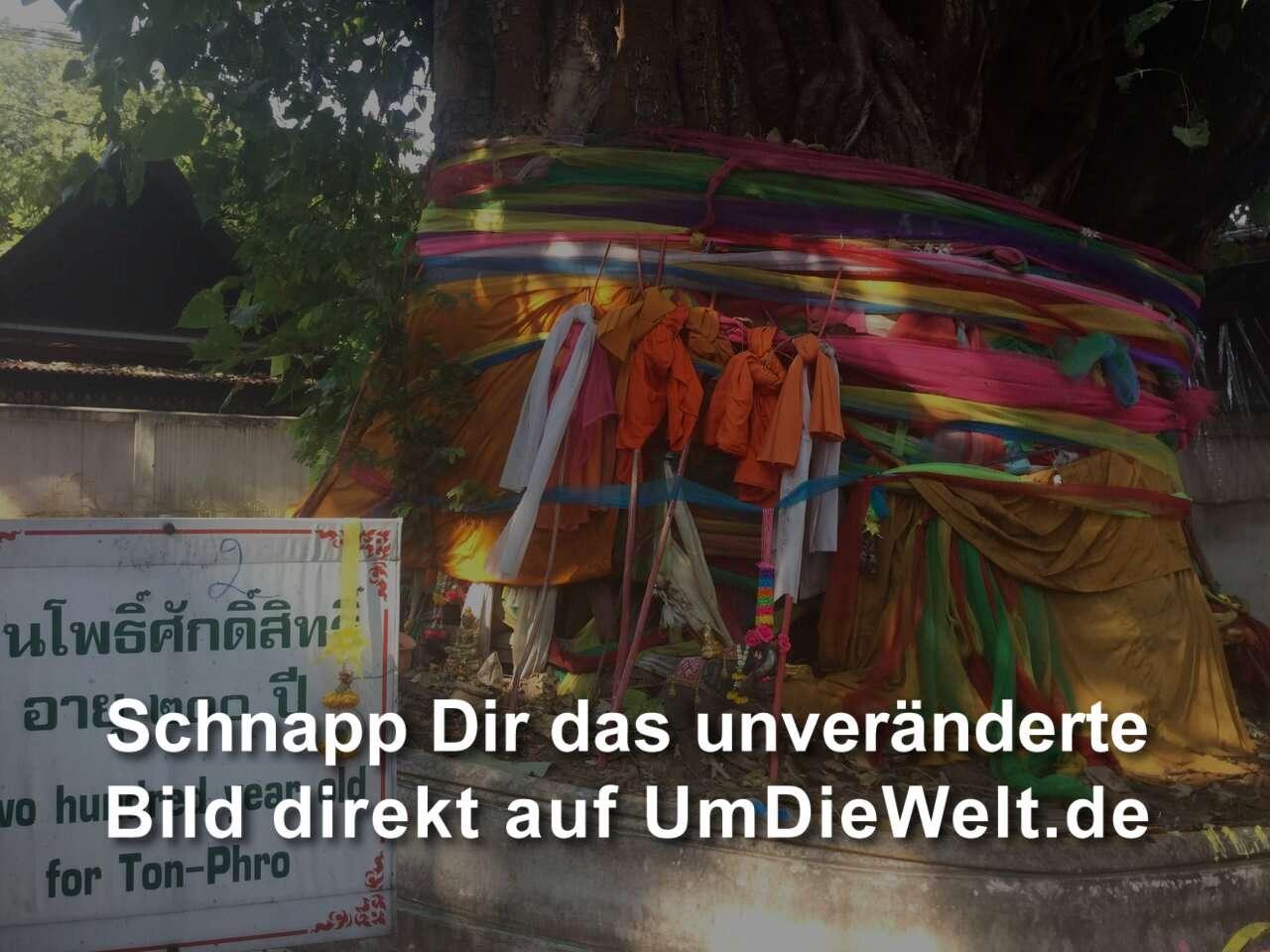 Stadt Der Engel 30 Sekunden Zum Mars Mp3 Download