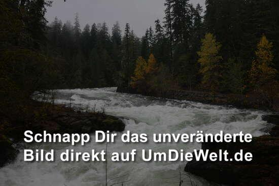 Stamp Falls leider ohne Lachs