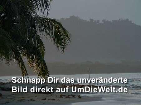 Sie sucht ihn chemnitz markt.de