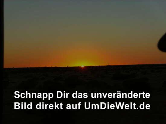 Sonnenaufgang im Outback