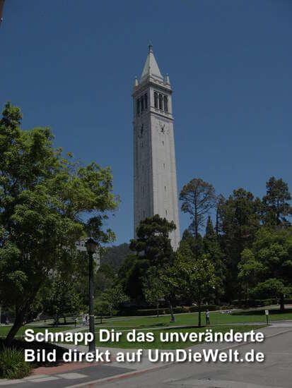 """USA-Reisebericht: """"San Francisco und Yosemite"""""""