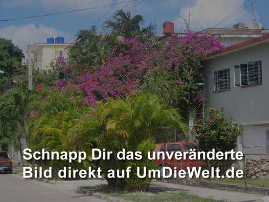 kuba reisebericht trinidad in kuba. Black Bedroom Furniture Sets. Home Design Ideas