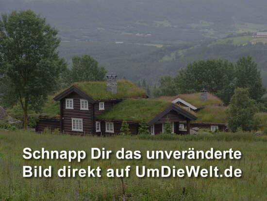norwegen reisebericht 12 woche norwegen. Black Bedroom Furniture Sets. Home Design Ideas