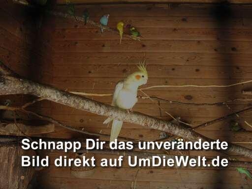 hotel unterwegs reiseziele deutschland schoensten zoos