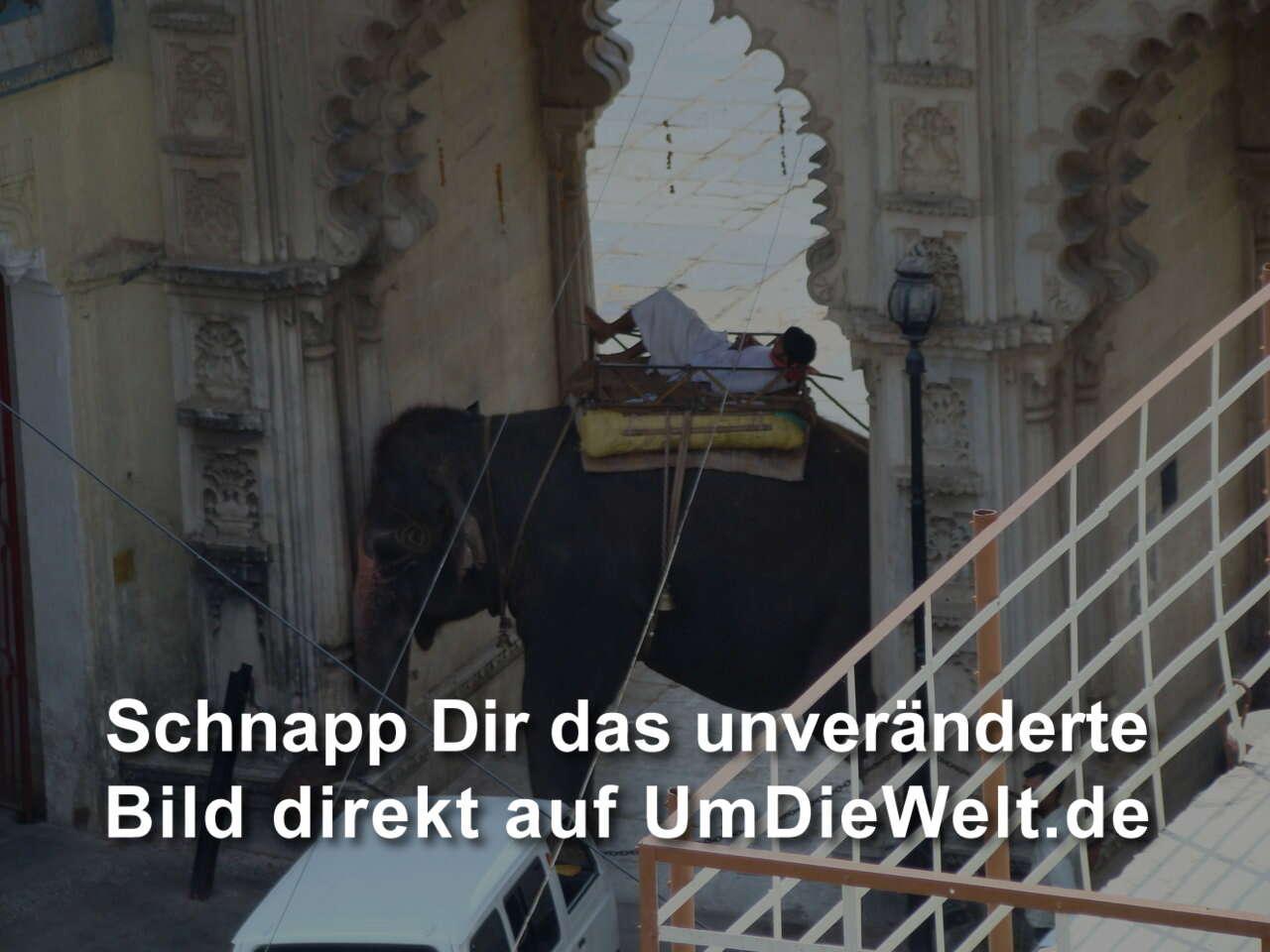 IndienReisebericht 14 tägige Tour durch Rajasthan