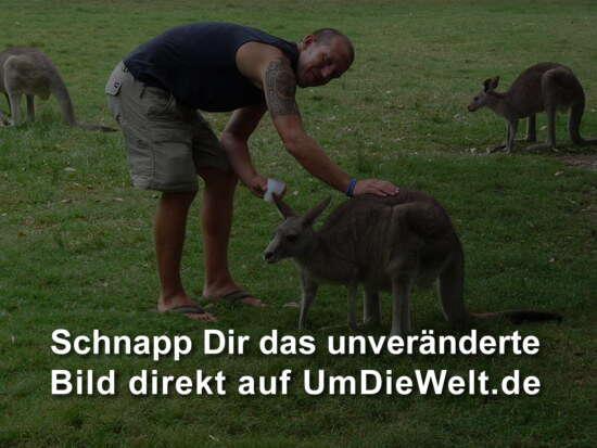Campingplatz flirten Kurcamping Fuchs: Startseite