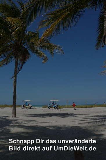 Rush Hour in Holbox