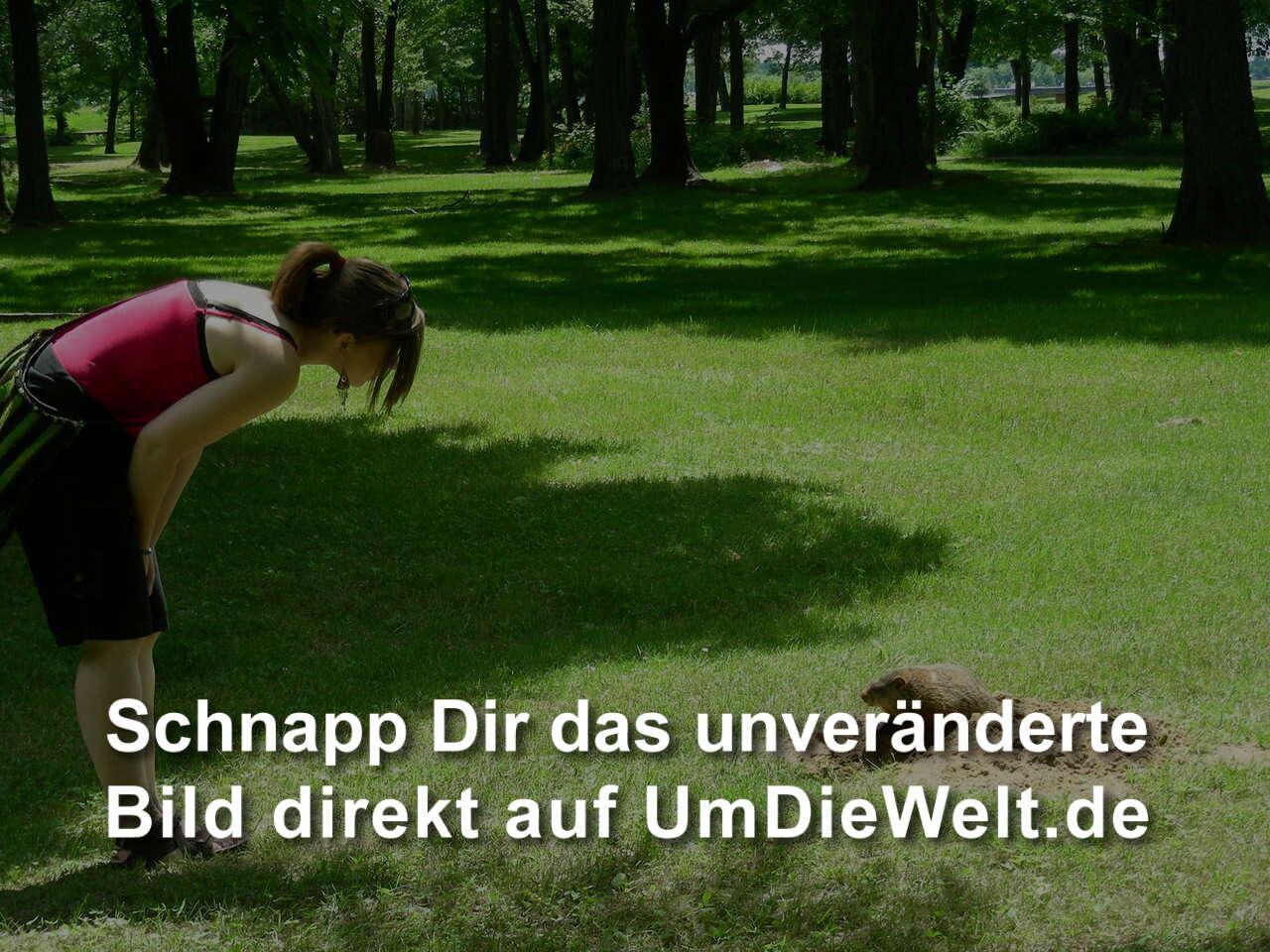 Was heisst bekanntschaft Startseite, Das Landesportal Wir in NRW