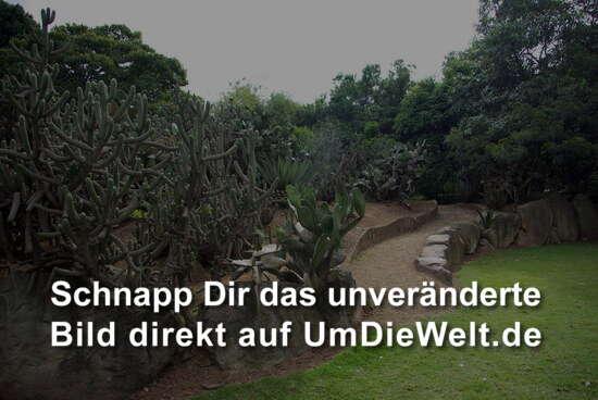 Kolumbien reisebericht dia 4 bogota jardin botanico for Jardin kolumbien