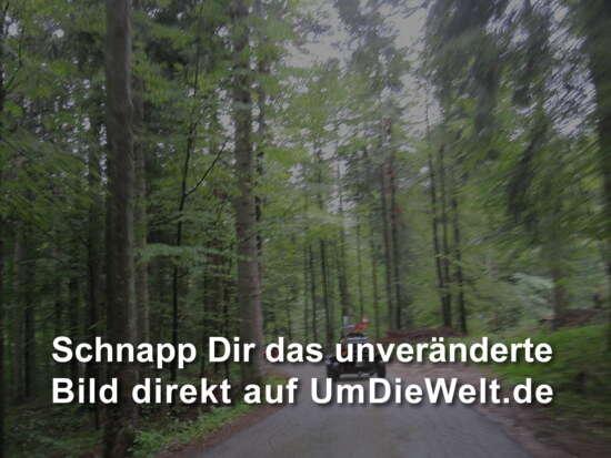 Unterbergen - Peroj 9