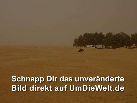 Spielen im Sand die Zweite.. 2