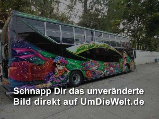 wir finden diese bunt bemalten Busse einfach klasse