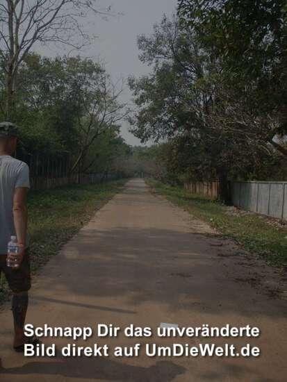 ...einsame Straßen entlang.....
