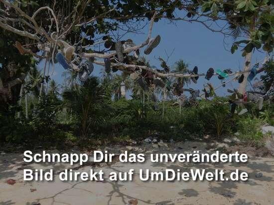 Flip-Flop-Baum