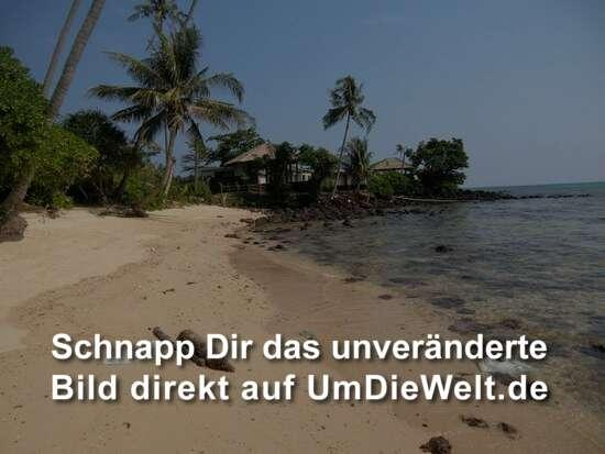 "der Strand am ""Palm Beach Resort"""