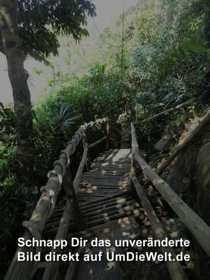 diesen Weg musst du gehen Tanja !!  .....