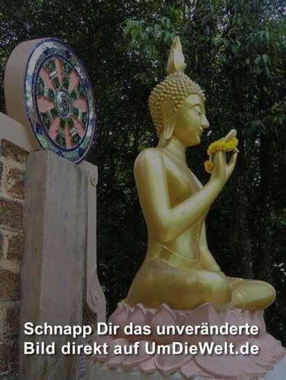der Buddha vor dem Wat