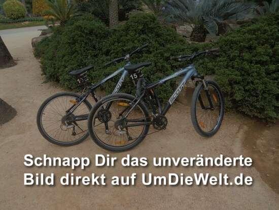 jaaaaaa, wir fahren Fahrrad !!!