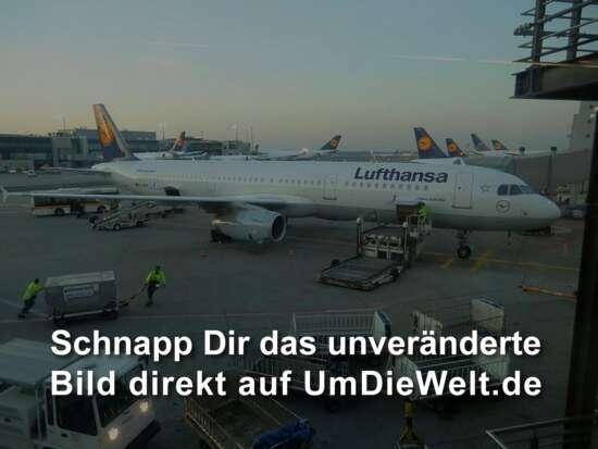 unser Flieger nach Berlin