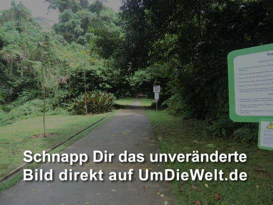 ...oder den Fußweg ???