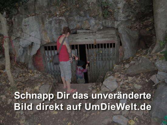 der Eingang zur Fledermaushöhle