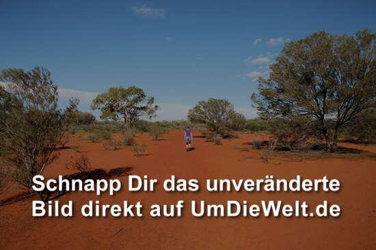 australien reisebericht uluru kata tjuta national park. Black Bedroom Furniture Sets. Home Design Ideas