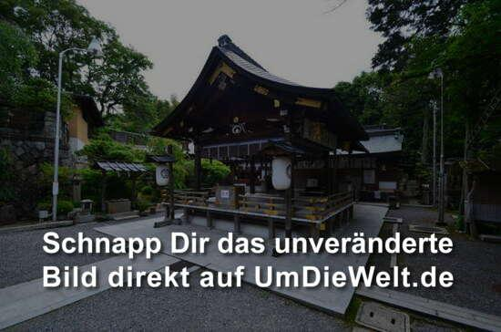 Japan reisebericht kyoto - Moosgarten kyoto ...