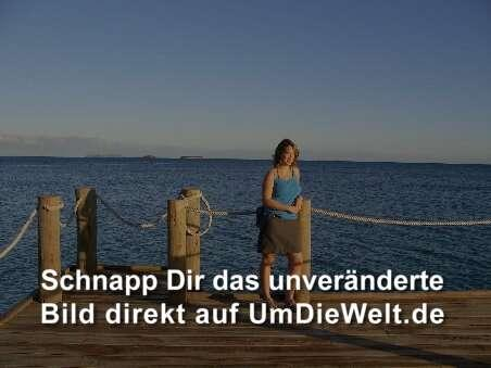 Die Abenteuer Der Seaspray [1965– ]