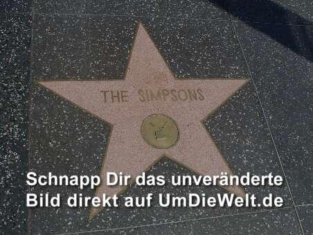 Die Simpsons verewigt im Walk of Fame
