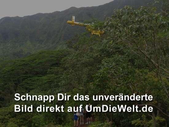 Usa Reisebericht Quot Maunawili Falls Quot