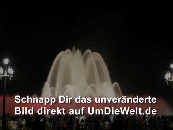 Webcam Störche-Ansicht des Standortes Gerstungen ... mehr dazu auf ...