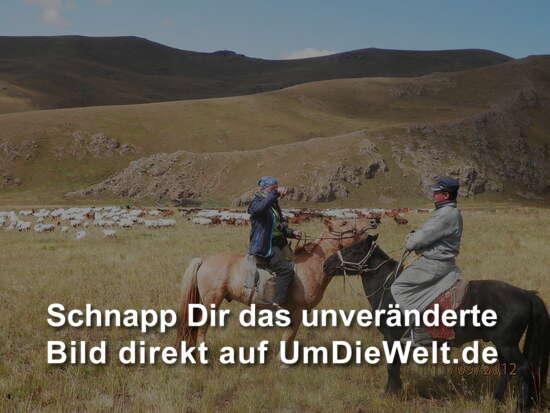 mongolei reisebericht reiten in mongolischer steppe. Black Bedroom Furniture Sets. Home Design Ideas