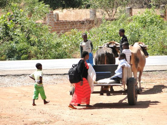 unterwegs in sambia...